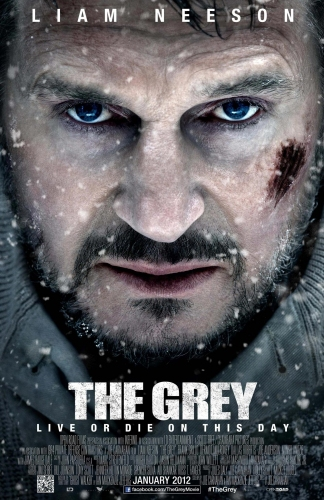 the_grey-poster-locandina.jpg