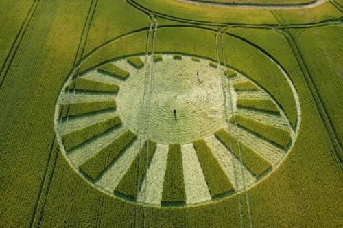 10 West-Kennett-Avebury-Wiltshire-Wheat-13-07-2004-.jpg