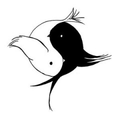 Ying_Yang_Dove_Crow_by_fallen_angel_112358.jpg
