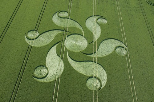 2 Honey-St-Alton-Barnes-Wiltshire-Wheat-16-06-2004.jpg