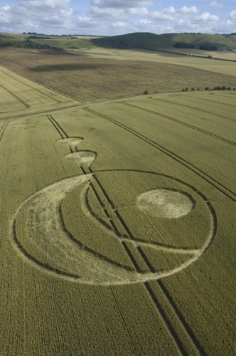 13 South-Field-Alton-Barnes-Wiltshire-Wheat-15-07-2004-.jpg