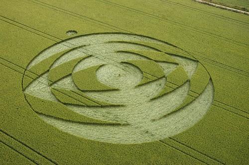 7 Coombe-Abbey-Warwickshire-Wheat-05-07-2004.jpg