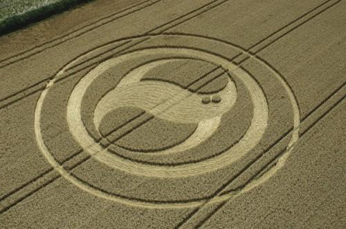 37 West-Meon-Hampshire-Wheat 6.8-2004.jpg