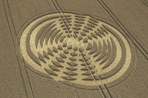 38 Shelbourne-Wiltshire-Wheat-07-08-2004.jpg