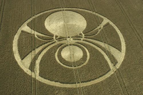 32 Etchilhampton-Hill,-Wiltshire-Wheat-03-08-2004.jpg