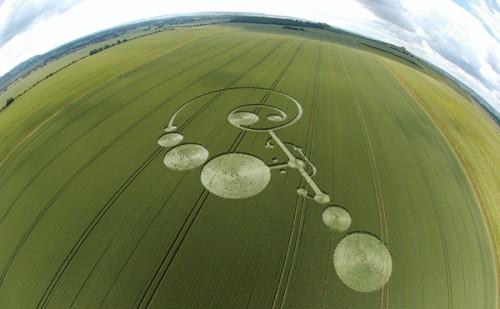 4 East-Field-Alton-Barnes-Wiltshire-Wheat-20-06-2004.jpg