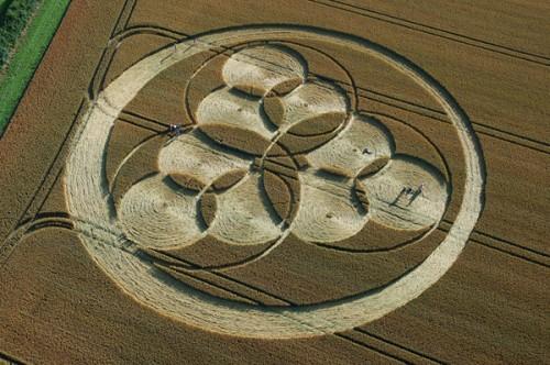 12.1 Windmill Hill Wiltshire 22-07-06.jpg