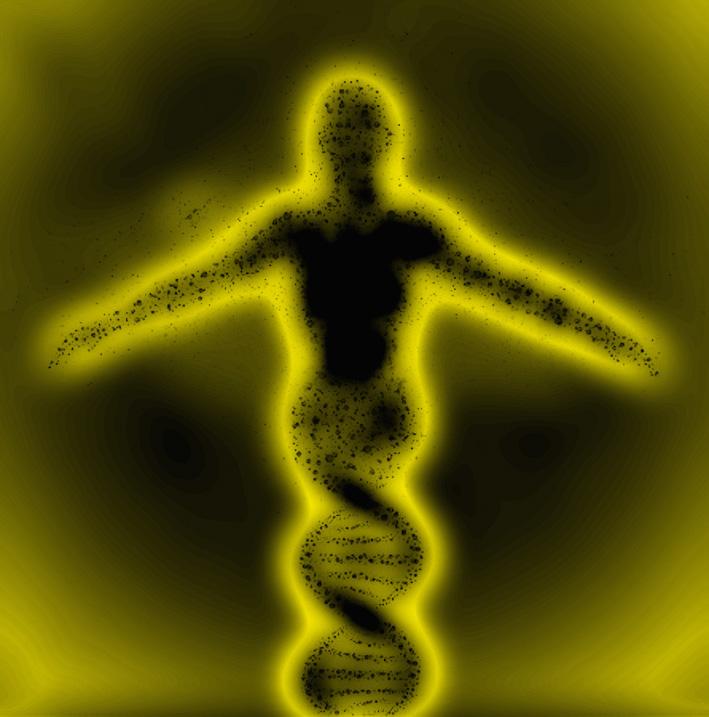 DNA alias DONNA e GIARDINO
