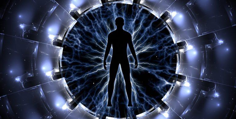 portal cibernetico